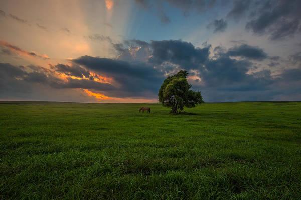 Humid Photograph - Windows Sd by Aaron J Groen