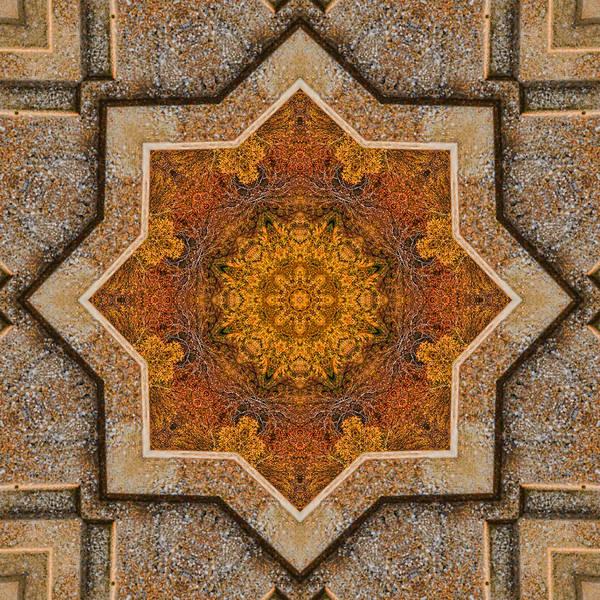 Photograph - Windows To Autumn Mandala 2 by Beth Sawickie