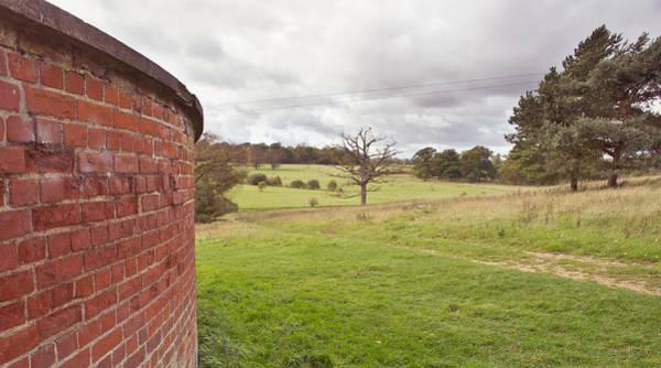 Windswept Photograph - Windy Landscape by Tom Gowanlock