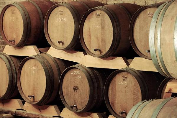 Wine Barrels Photograph - Wine Barrels by Mauro Fermariello/science Photo Library