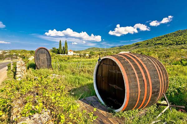Starigrad Photograph - Wine Barrels On Stari Grad Plain by Brch Photography