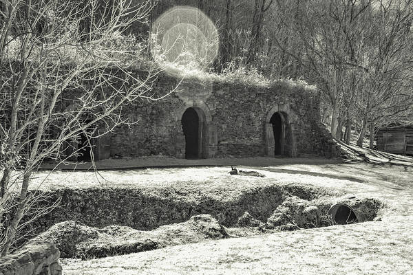 Photograph - Wine Cellar Park by Mary Almond