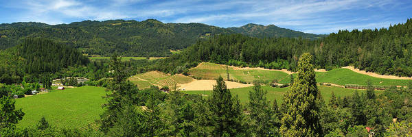 Photograph - Wine Country Panorama by James Eddy
