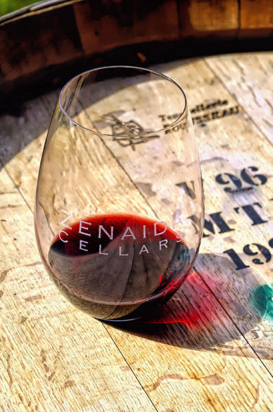 Photograph - Wine Glass by Bill Dodsworth