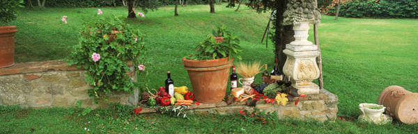Bottle Green Photograph - Wine Grapes And Foods Of Chianti Region by Panoramic Images