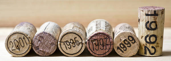 Wine Tasting Photograph - Wine Vintages by Frank Tschakert