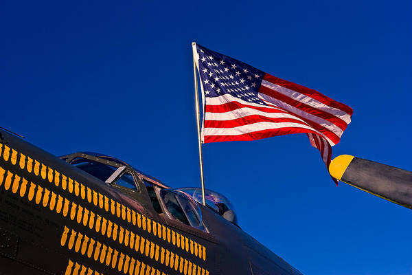 Photograph - Wing Of Freedom by Jeff Sinon