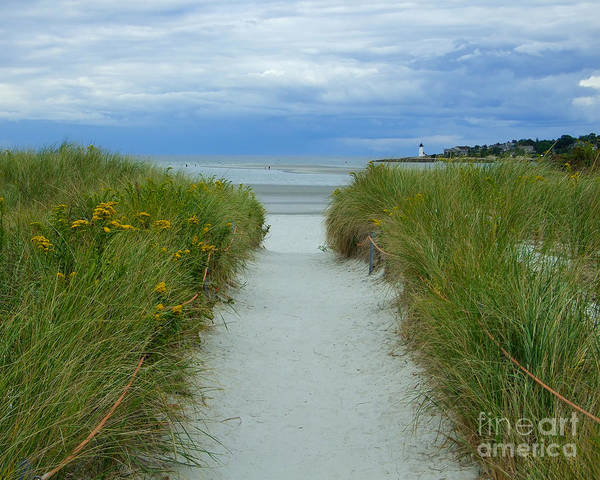 Photograph - Wingaersheek Beach Path And Annisquam Lighthouse by Kristen Fox