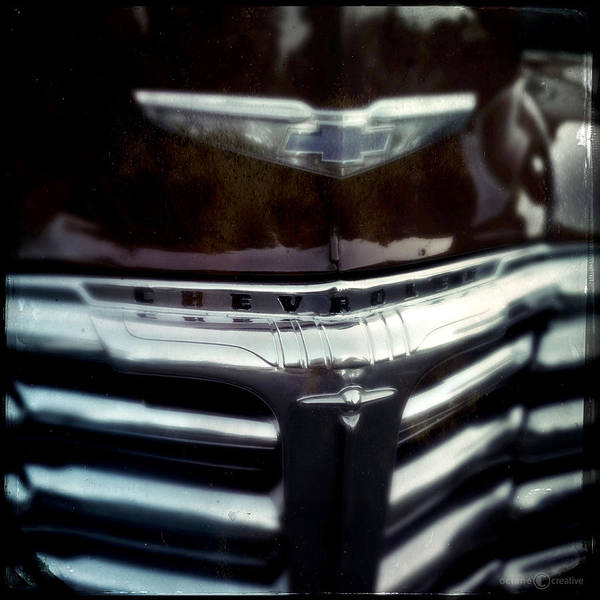 Photograph - Winged Bowtie by Tim Nyberg
