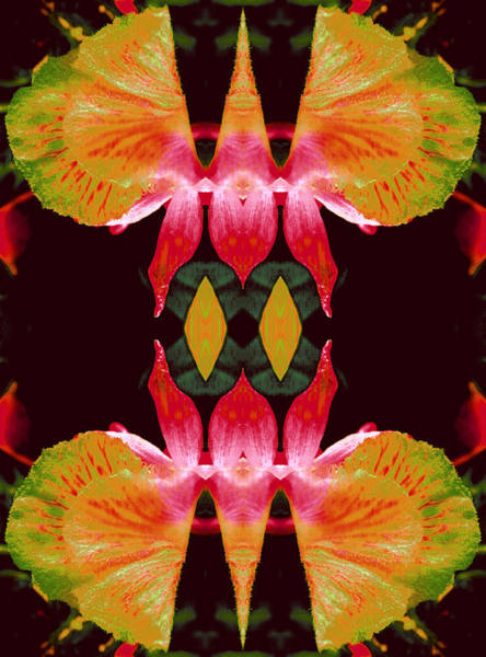 Essence Digital Art - Wings Of Focused Creativity by Marie-Louise Svensson