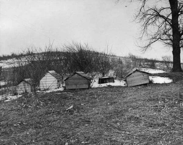 Indian Burial Ground Photograph - Winnebago Graves, 1920 by Granger