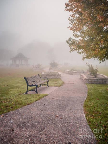 Photograph - Winona Photographer Path To Rose Garden by Kari Yearous