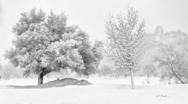 Winona Snowstorm Art Print