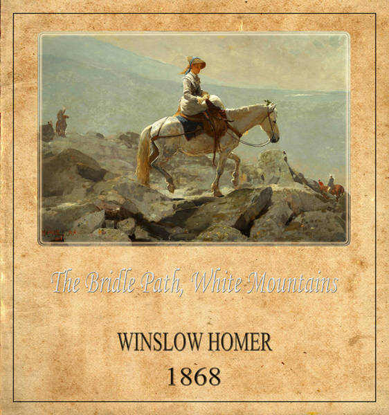 Photograph - Winslow Homer 5 by Andrew Fare