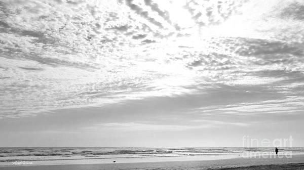 Photograph - Winter Afternoon St Augustine Anastasia Island Florida by Michelle Constantine
