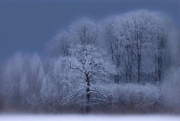 Wall Art - Photograph - Winter by Allan Wallberg