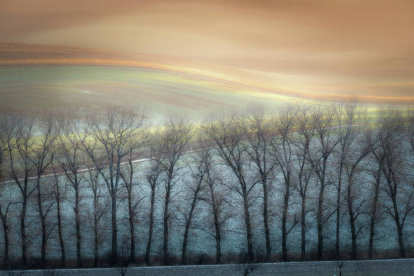 Wall Art - Photograph - Winter Alley by Marek Boguszak