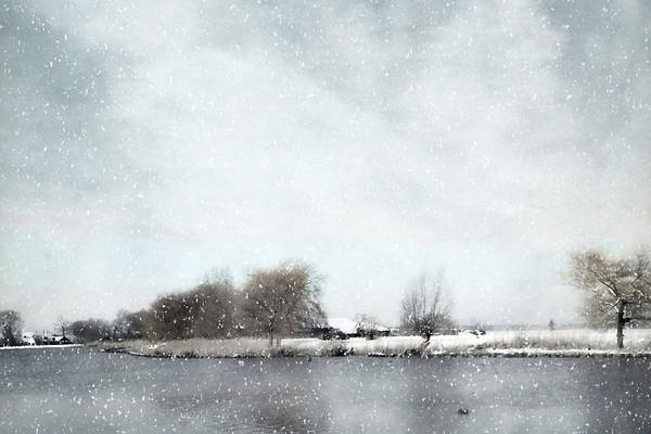 Photograph - Winter by Annie Snel