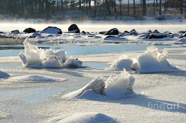 Photograph - Winter Art by Randi Grace Nilsberg