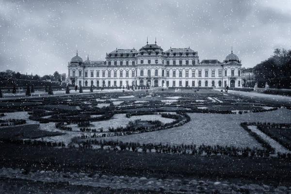 Photograph - Winter At Belvedere by Joan Carroll