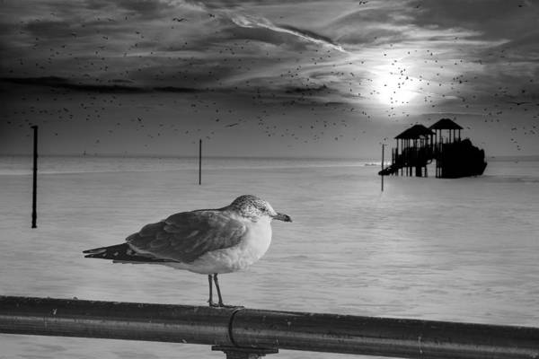 Photograph - Winter At Coney Island by Chris Lord