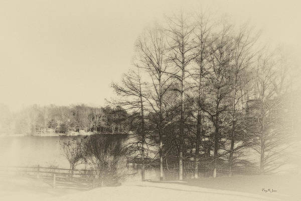 Photograph - Winter At Lakeside by Barry Jones