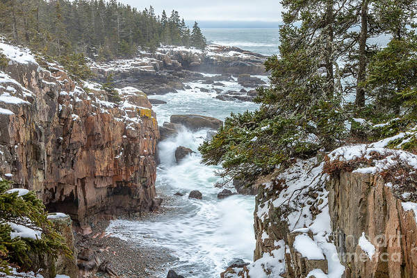 Photograph - Winter At Raven's Nest by Susan Cole Kelly