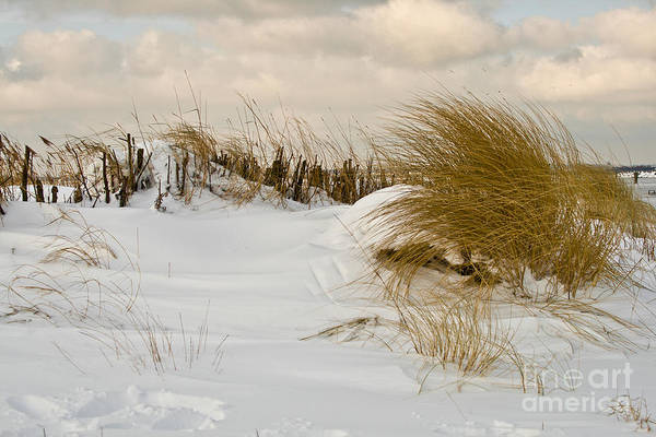 Photograph - Winter At The Beach 3 by Heiko Koehrer-Wagner