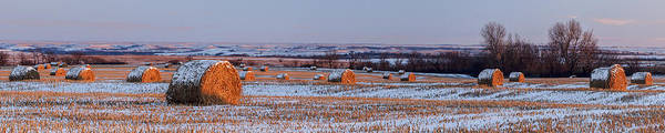 Haybale Wall Art - Photograph - Winter Bales by Scott Bean