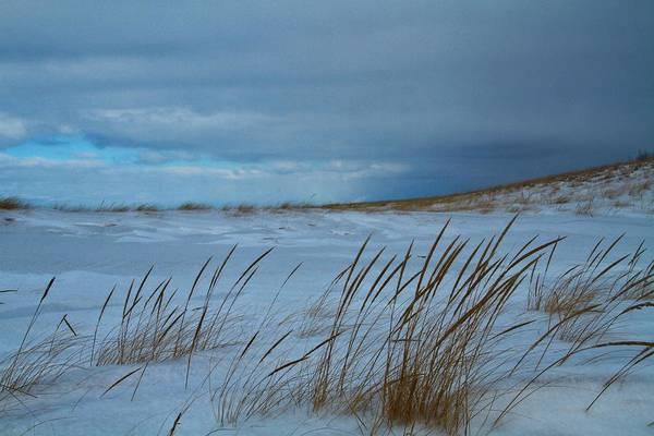 Wall Art - Photograph - Winter Beach by Dan Sproul
