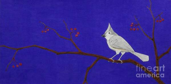 Titmouse Drawing - Winter Berries by Gerald Strine