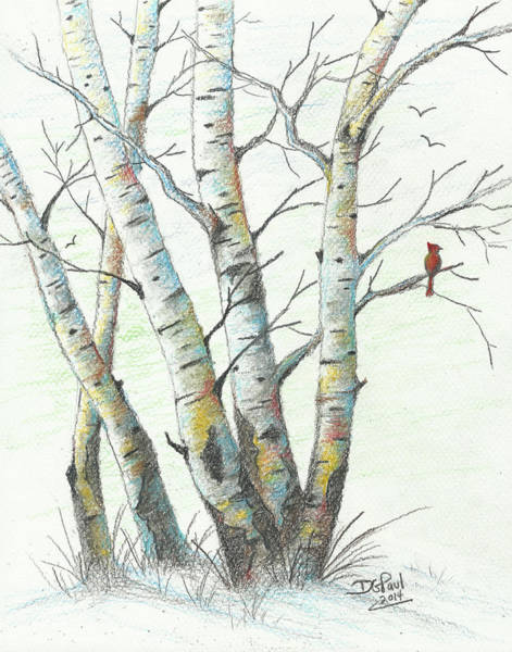 Wall Art - Digital Art - Winter Birches by David G Paul