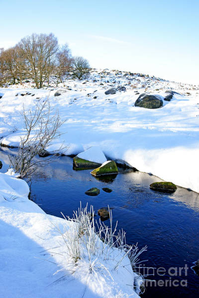 Photograph - Winter Blue by David Birchall
