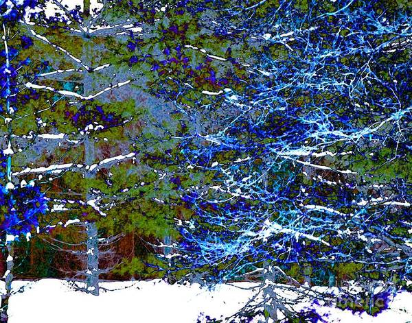 Digital Art - Winter Blues by Dale   Ford