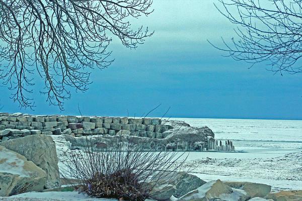 Photograph - Winter Blues by Kay Novy