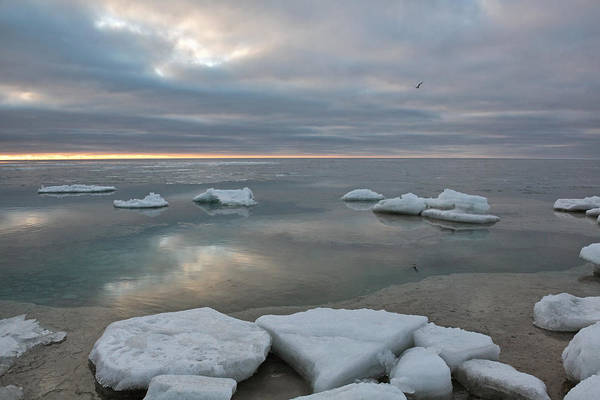 Photograph - Winter Breakup by Theo O Connor