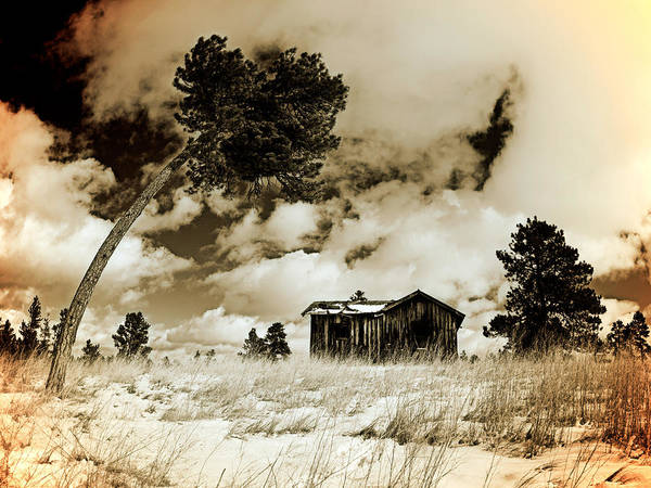 Photograph - Winter Cabin by Leland D Howard