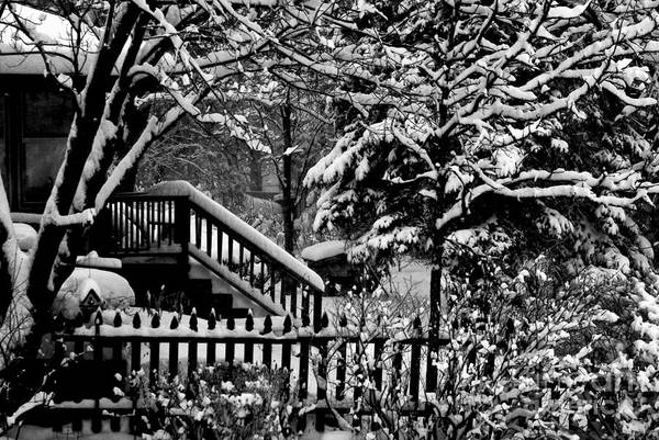 Photograph - Winter Can Be Beautiful  by Frank J Casella