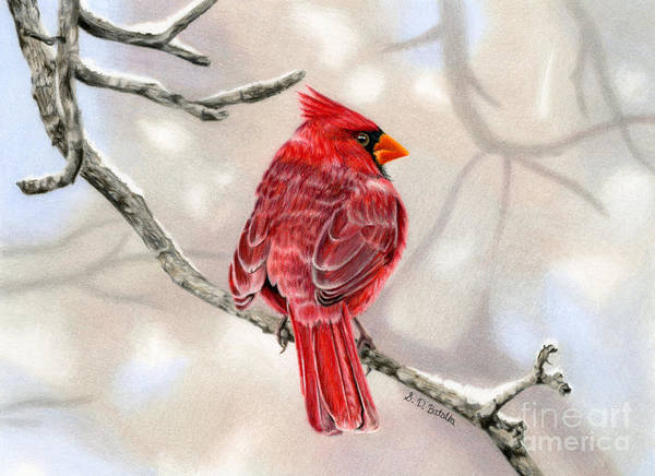Snow Scene Painting - Winter Cardinal by Sarah Batalka