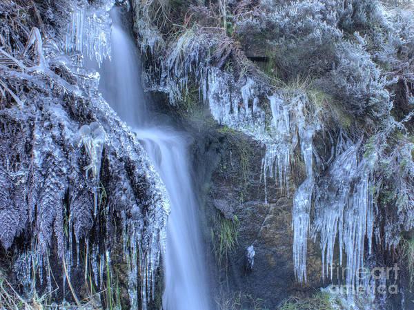Photograph - Winter Cascade by David Birchall