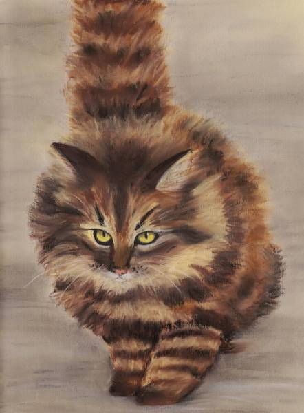 Painting - Winter Cat by Anastasiya Malakhova