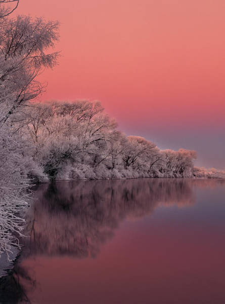 Best Selling Photograph - Winter Color by Leland D Howard