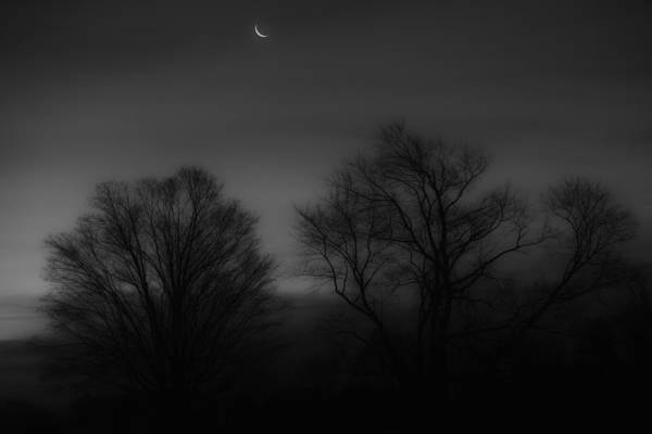 Photograph - Winter Crecent Moon by Bill Wakeley