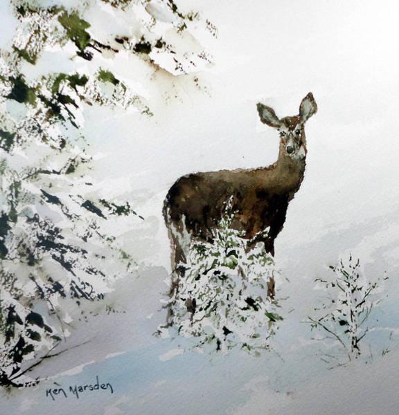 Winter Deer Art Print