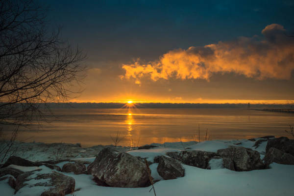 Photograph - Winter Delight by James  Meyer