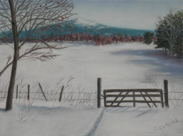 Pastel - Winter Field by Carol Corliss