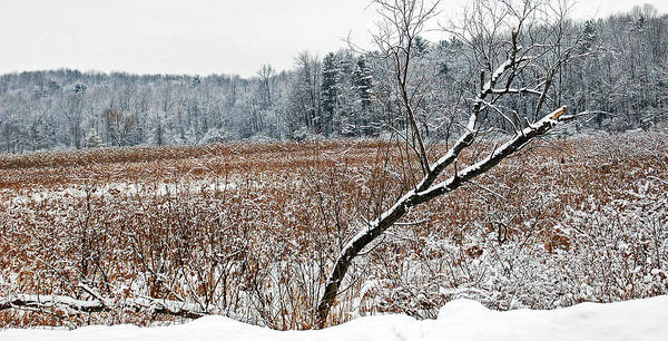 Mendon Photograph - Winter Fields by Aimee L Maher ALM GALLERY