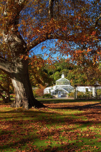 Glasshouse Photograph - Winter Gardens And Autumn Colour by David Wall