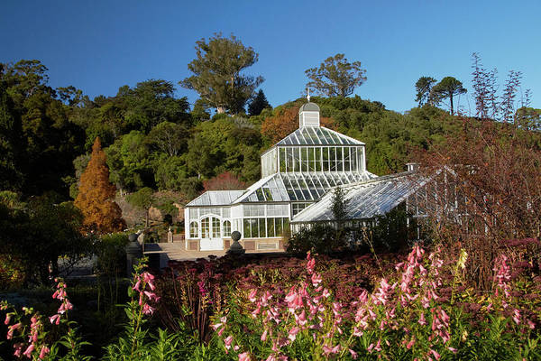 Glasshouse Photograph - Winter Gardens And Flowers, Botanic by David Wall
