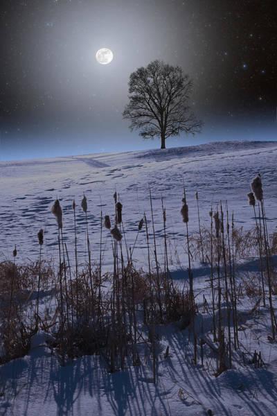 Photograph - Winter Glow by Larry Landolfi